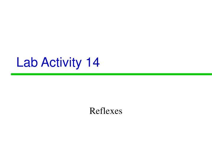 Lab Activity 14
