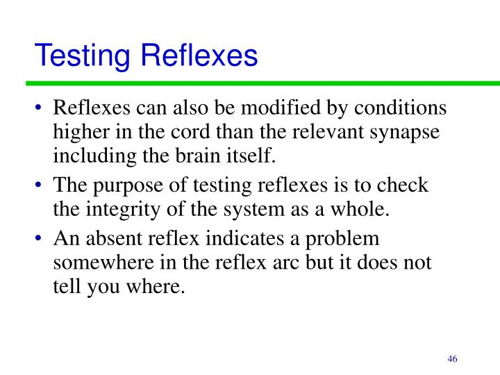 Testing Reflexes