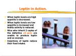 leptin in action