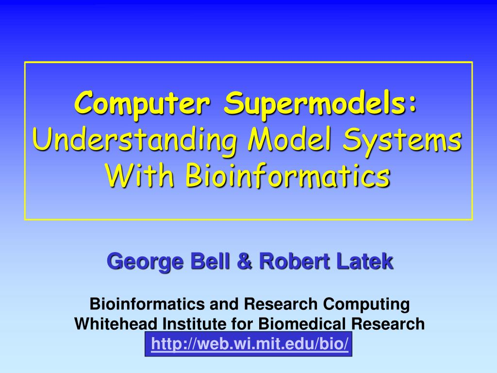 computer supermodels understanding model systems with bioinformatics l.