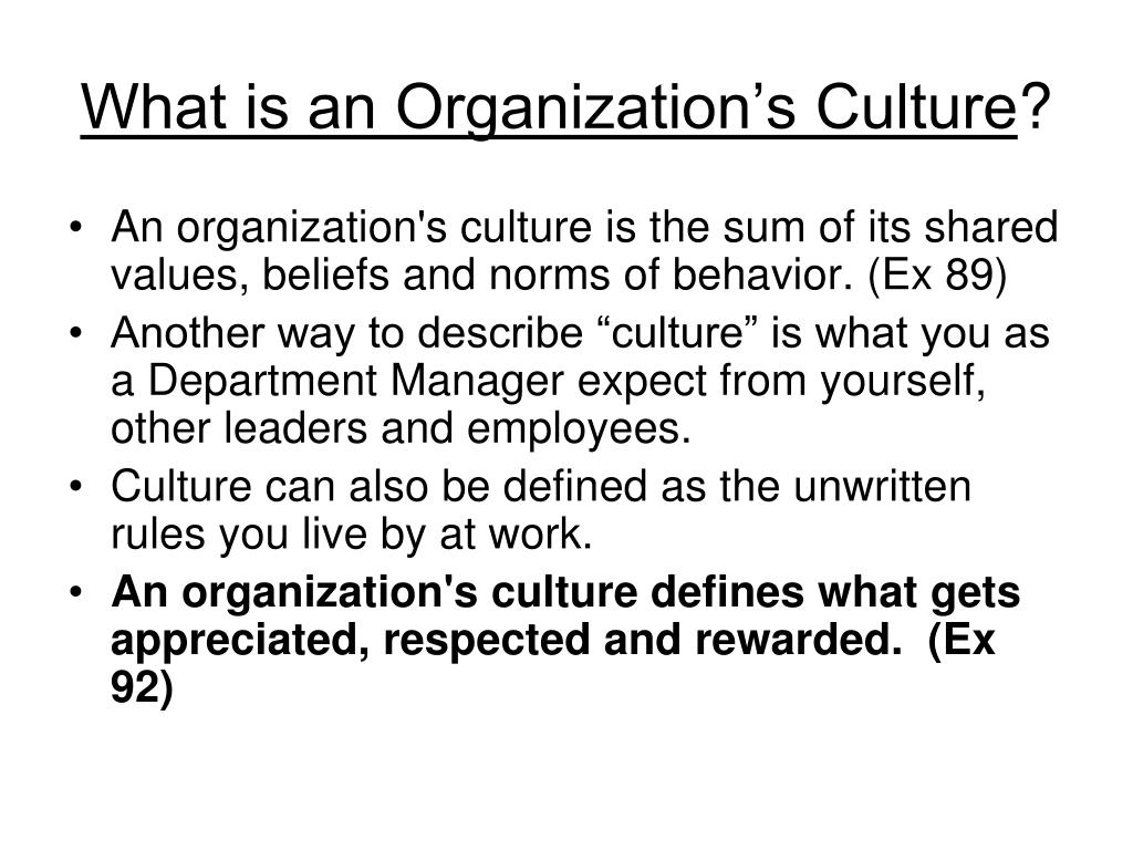 What is an Organization's Culture