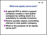 what are equity carve outs