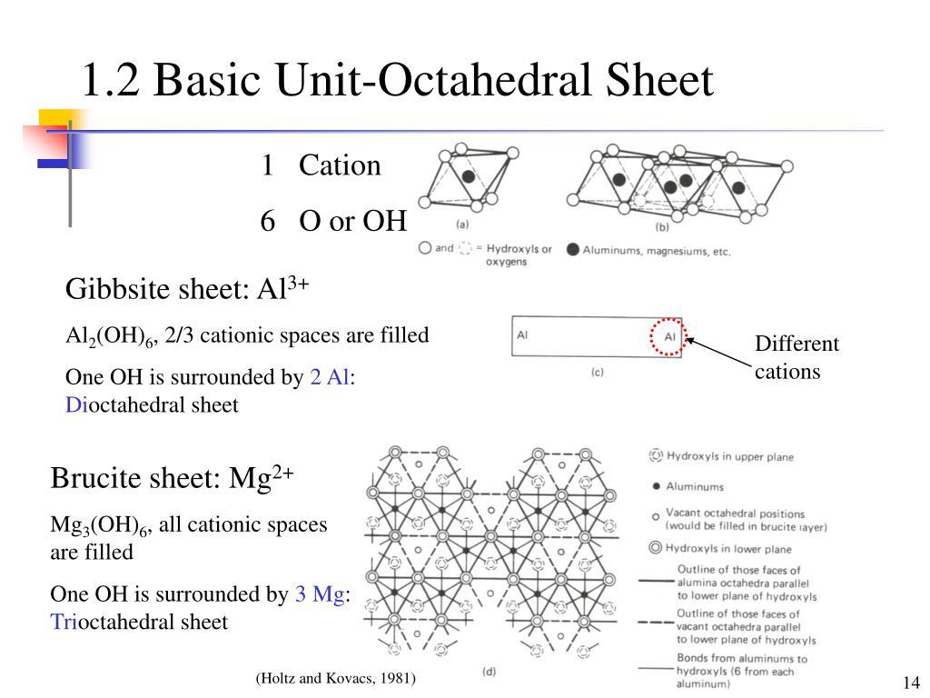 1.2 Basic Unit-Octahedral Sheet