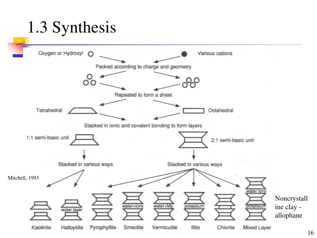 1.3 Synthesis