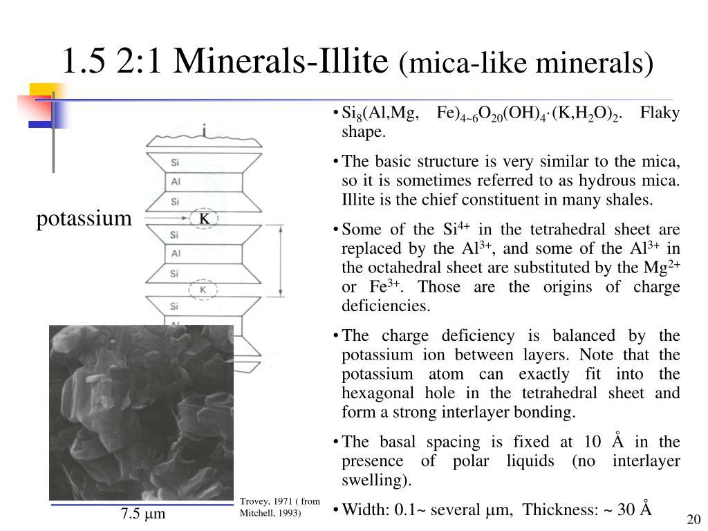 1.5 2:1 Minerals-Illite