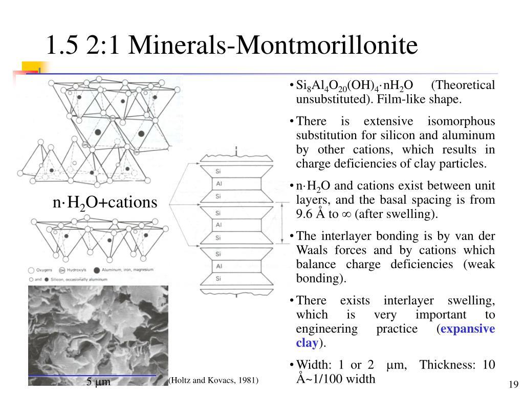 1.5 2:1 Minerals-Montmorillonite