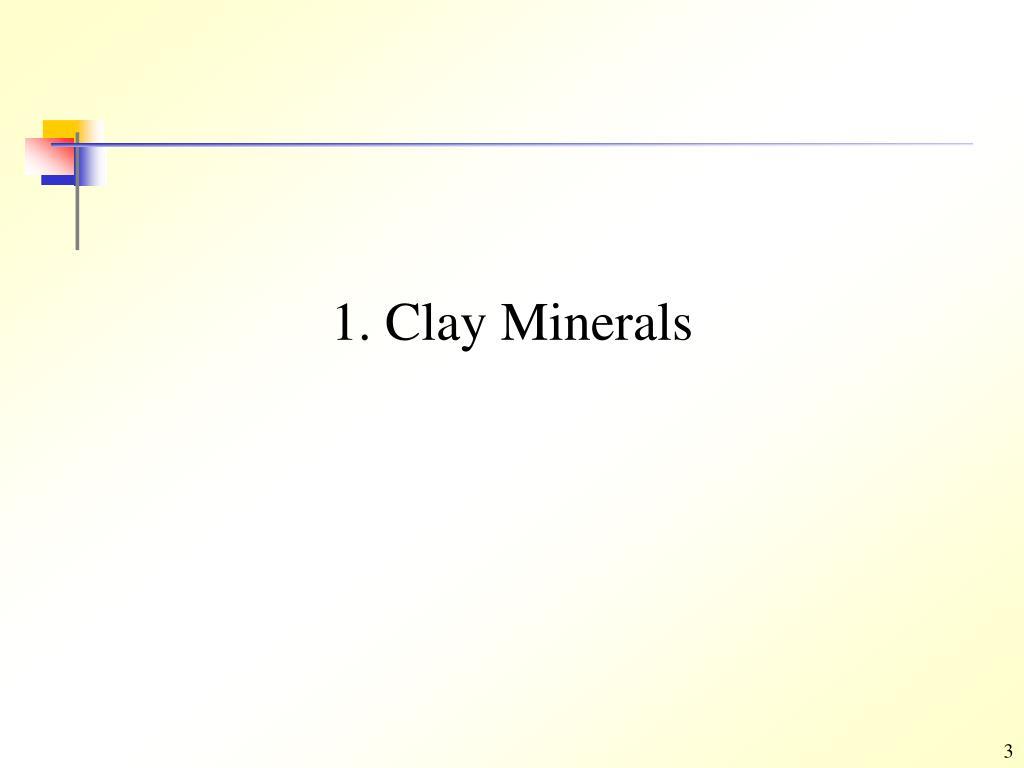 1. Clay Minerals
