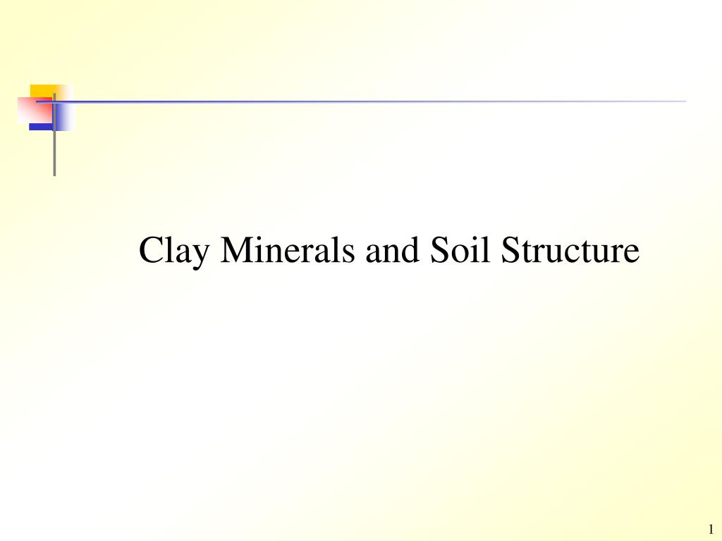 clay minerals and soil structure l.