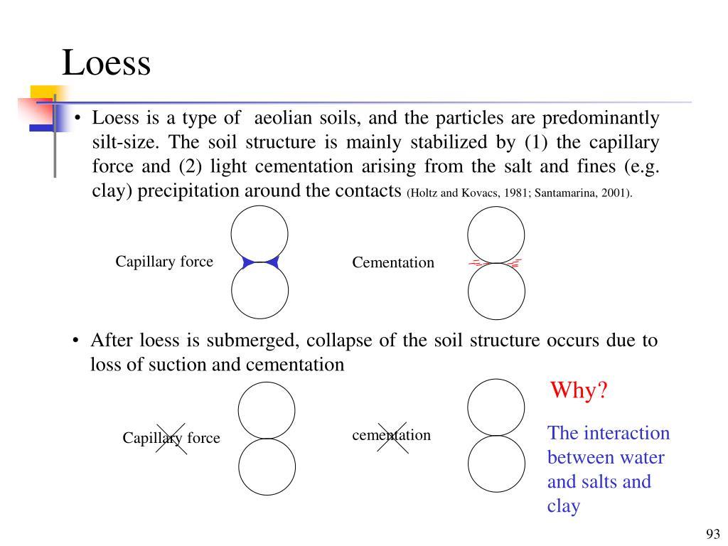Capillary force