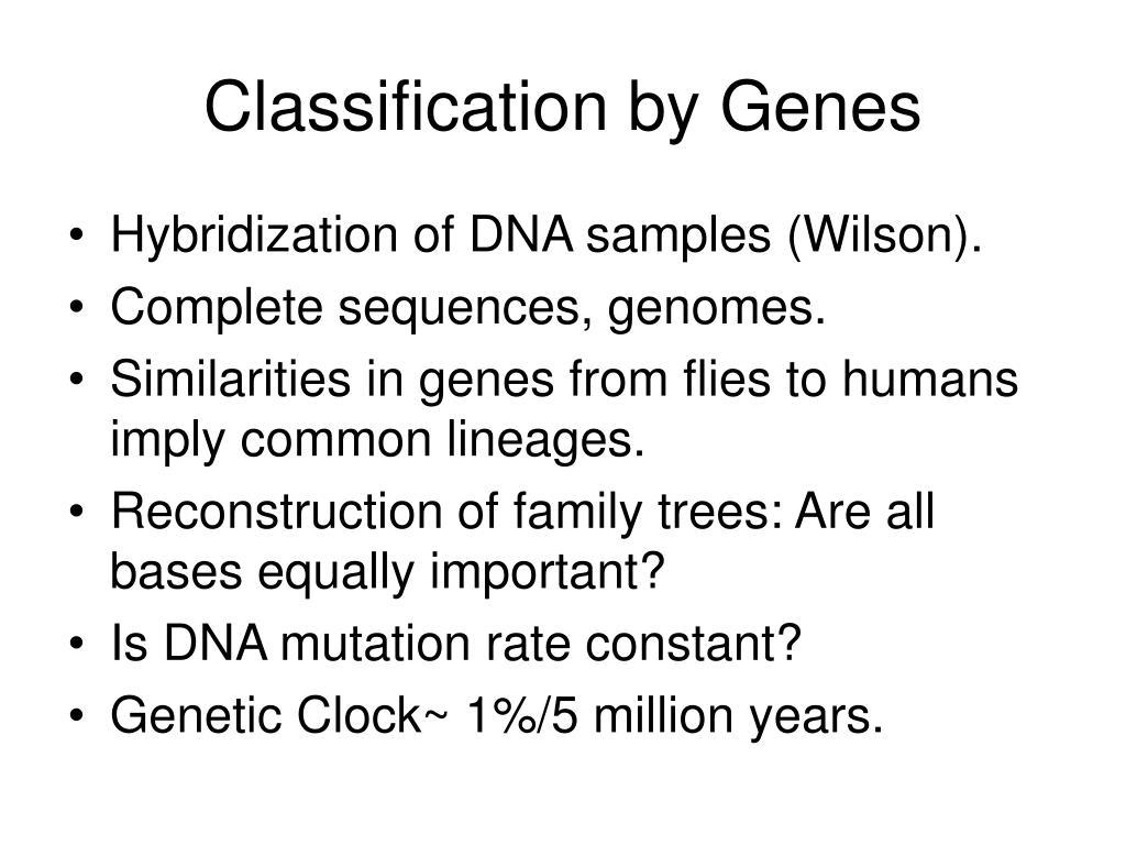 Classification by Genes