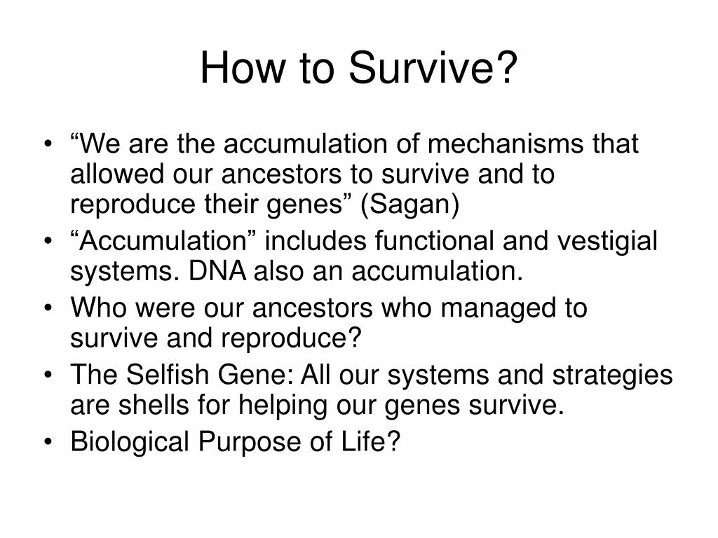 How to Survive?