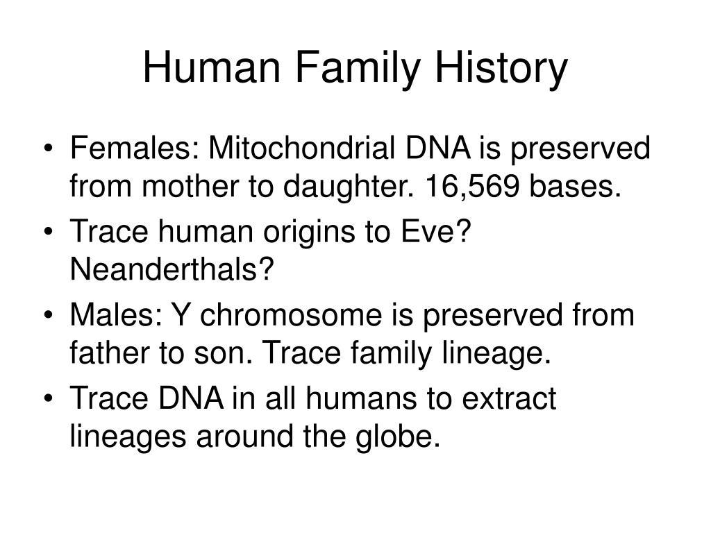 Human Family History