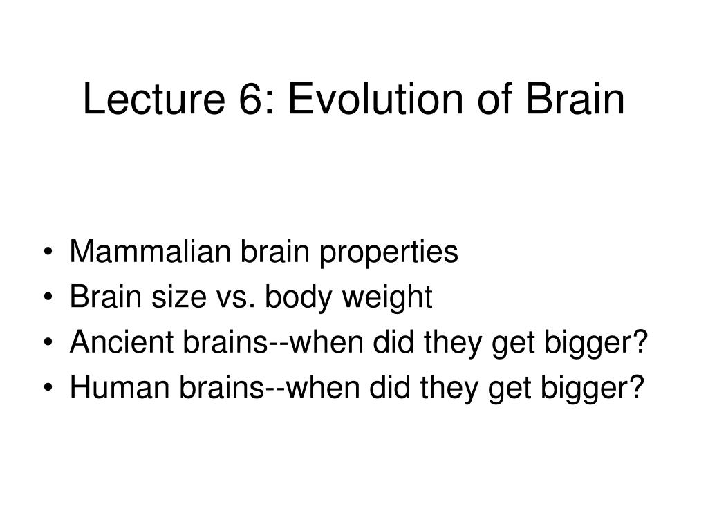 Lecture 6: Evolution of Brain