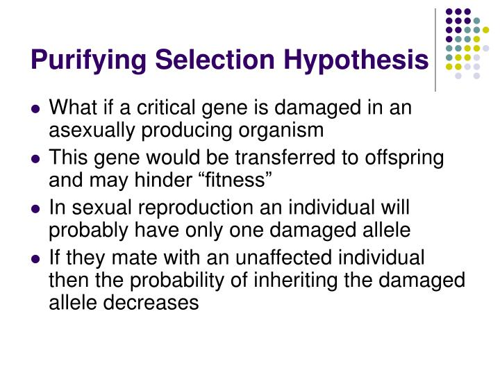 Purifying Selection Hypothesis