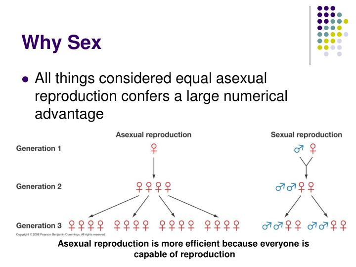 Why Sex