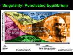 singularity punctuated equilibrium