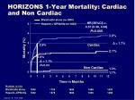 horizons 1 year mortality cardiac and non cardiac