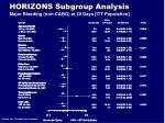 horizons subgroup analysis16