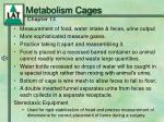 metabolism cages