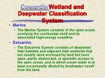 cowardin wetland and deepwater classification system