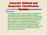 cowardin wetland and deepwater classification system7