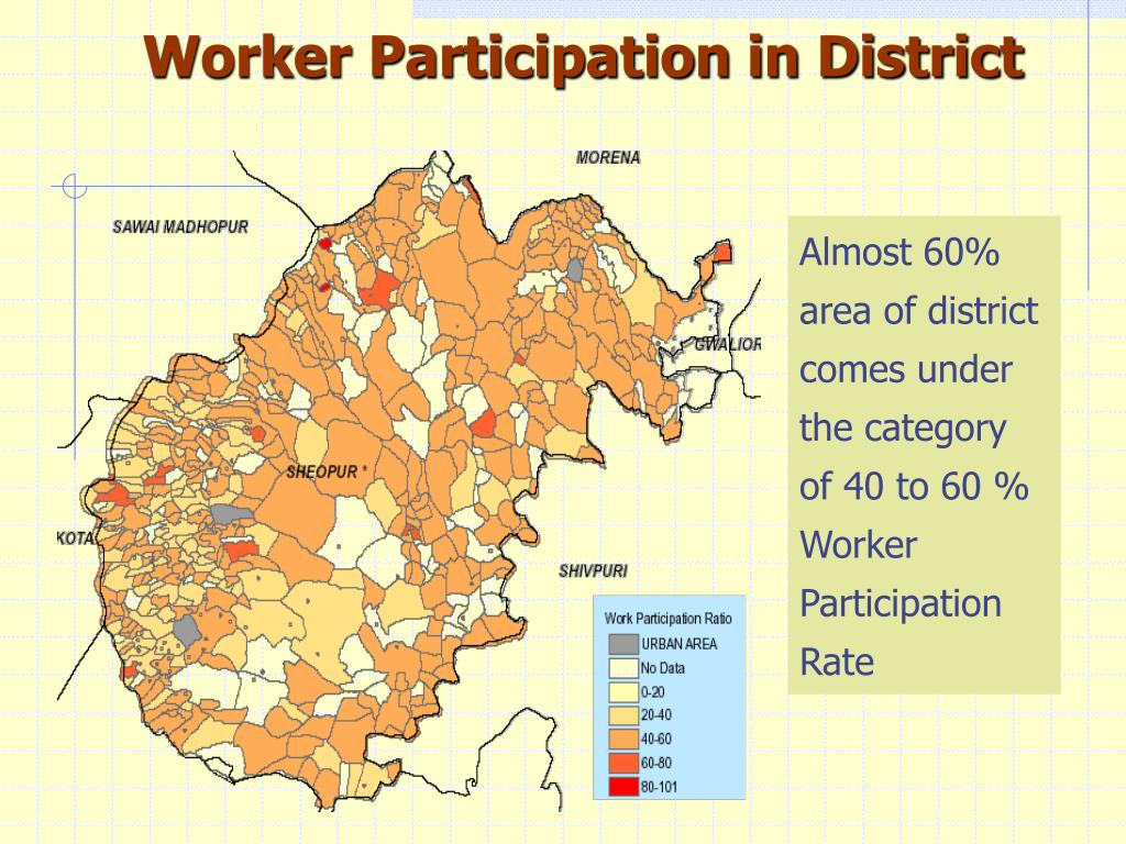 Worker Participation in District