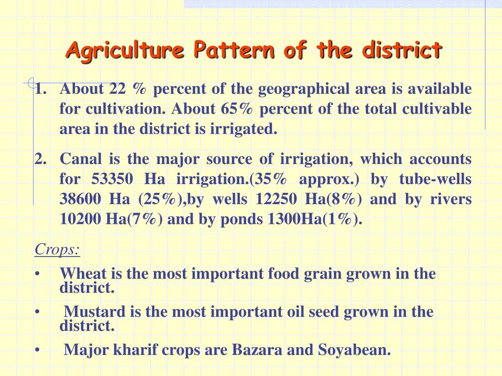 Agriculture Pattern of the district