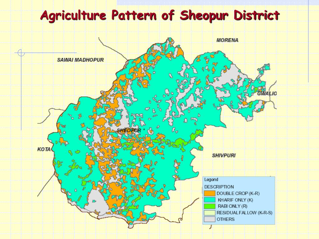Agriculture Pattern of Sheopur District