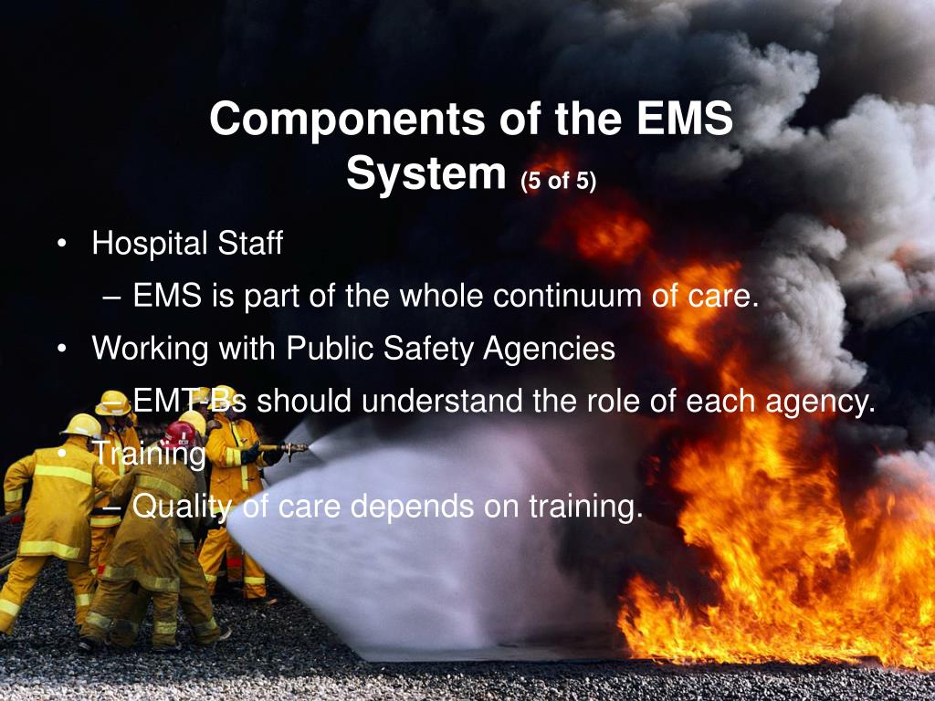 Components of the EMS