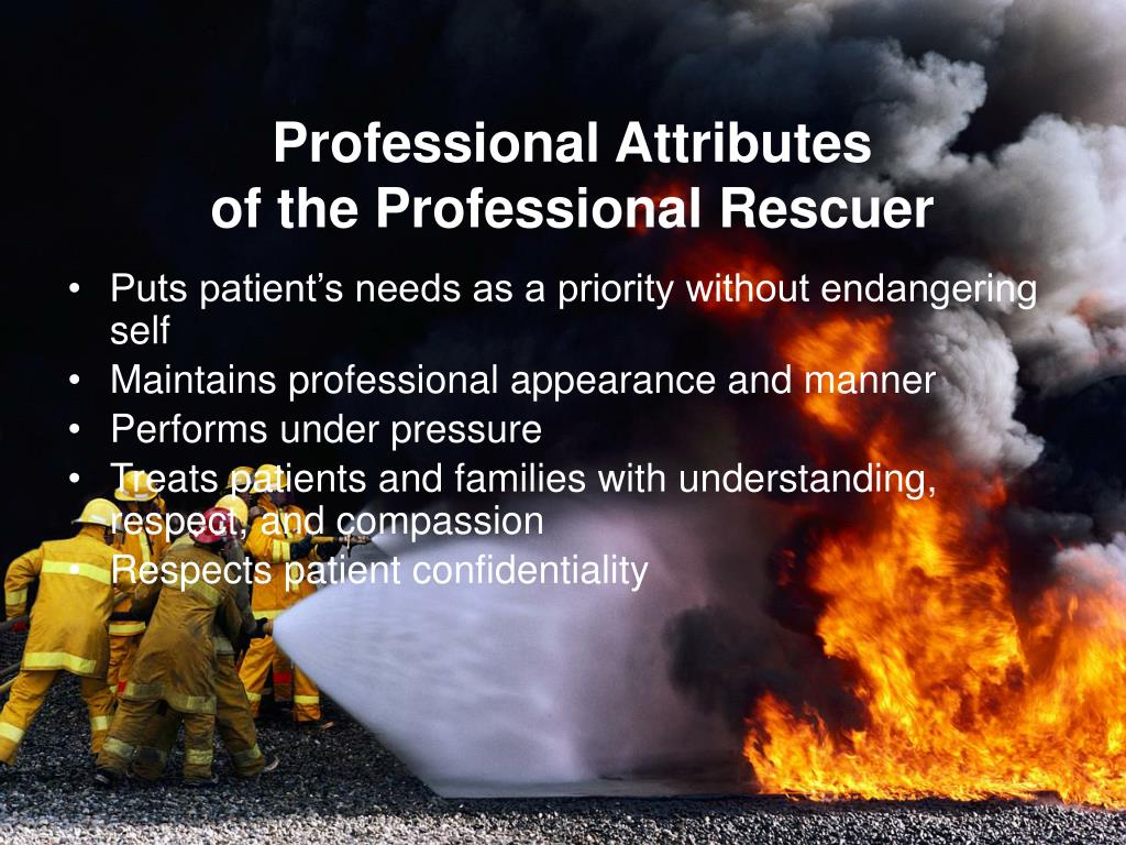 Professional Attributes