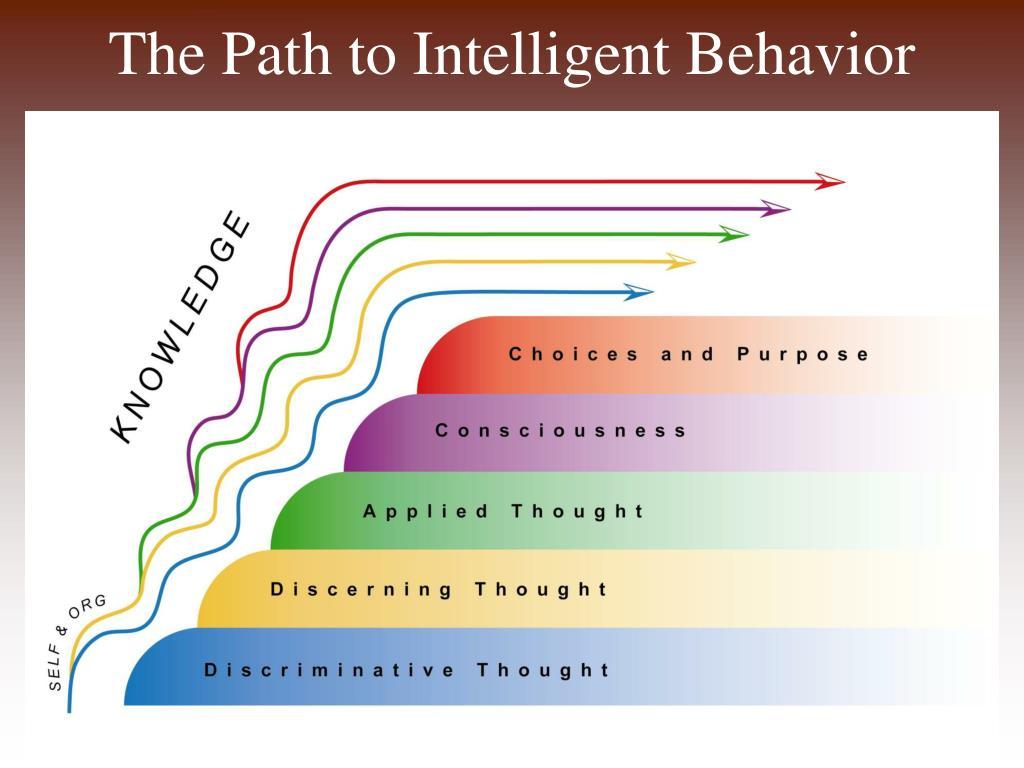 The Path to Intelligent Behavior