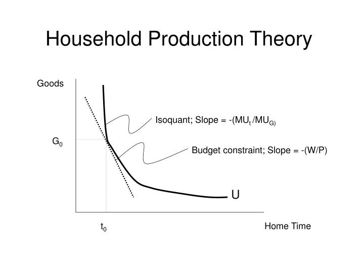 Household production theory1