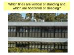which lines are vertical or standing and which are horizontal or sleeping