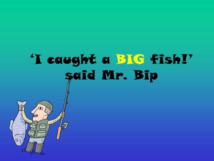 I caught a big fish said mr bip