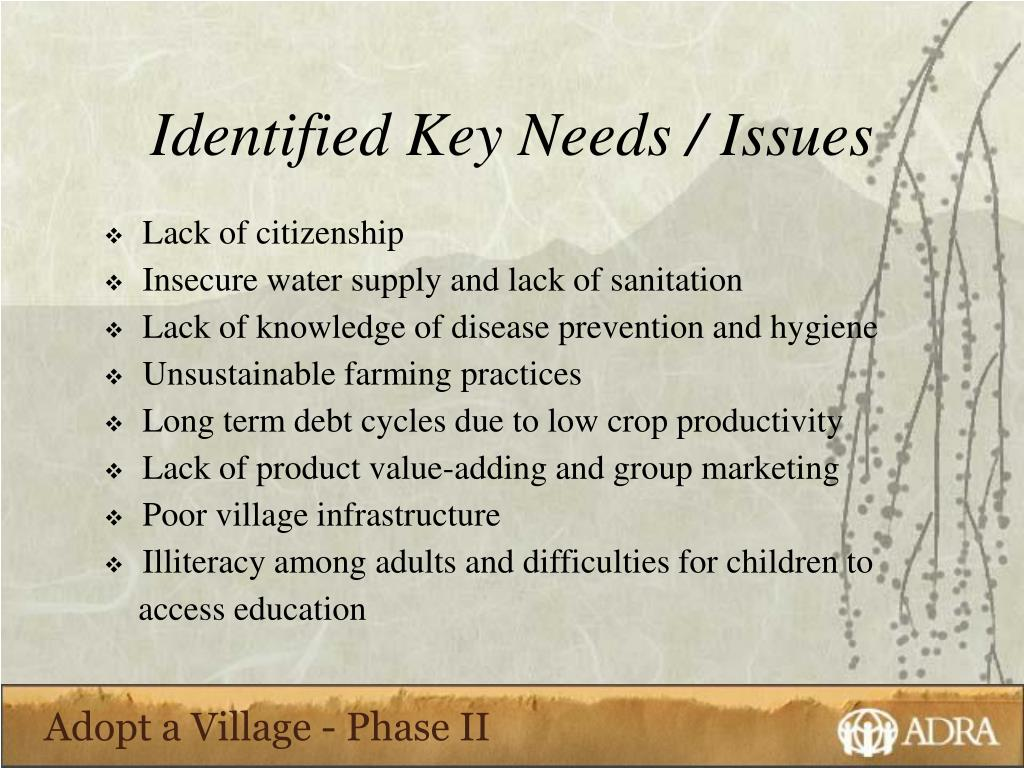 Identified Key Needs / Issues