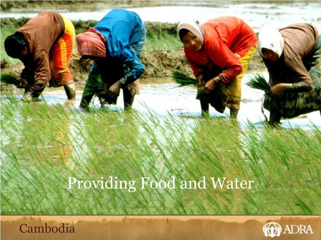 Providing Food and Water