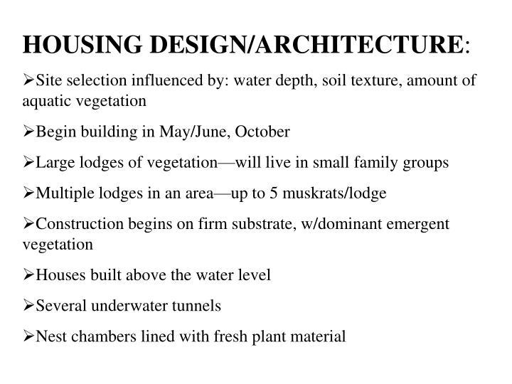 HOUSING DESIGN/ARCHITECTURE