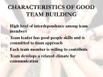 characteristics of good team building