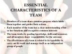essential characteristics of a team