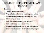 role of effecftive team leader