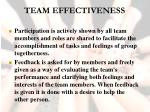 team effectiveness43