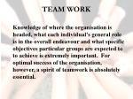 team work13