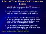 effects of tea on human oral precancerous lesions