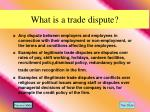 what is a trade dispute