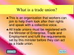 what is a trade union