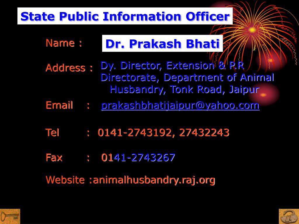 State Public Information Officer