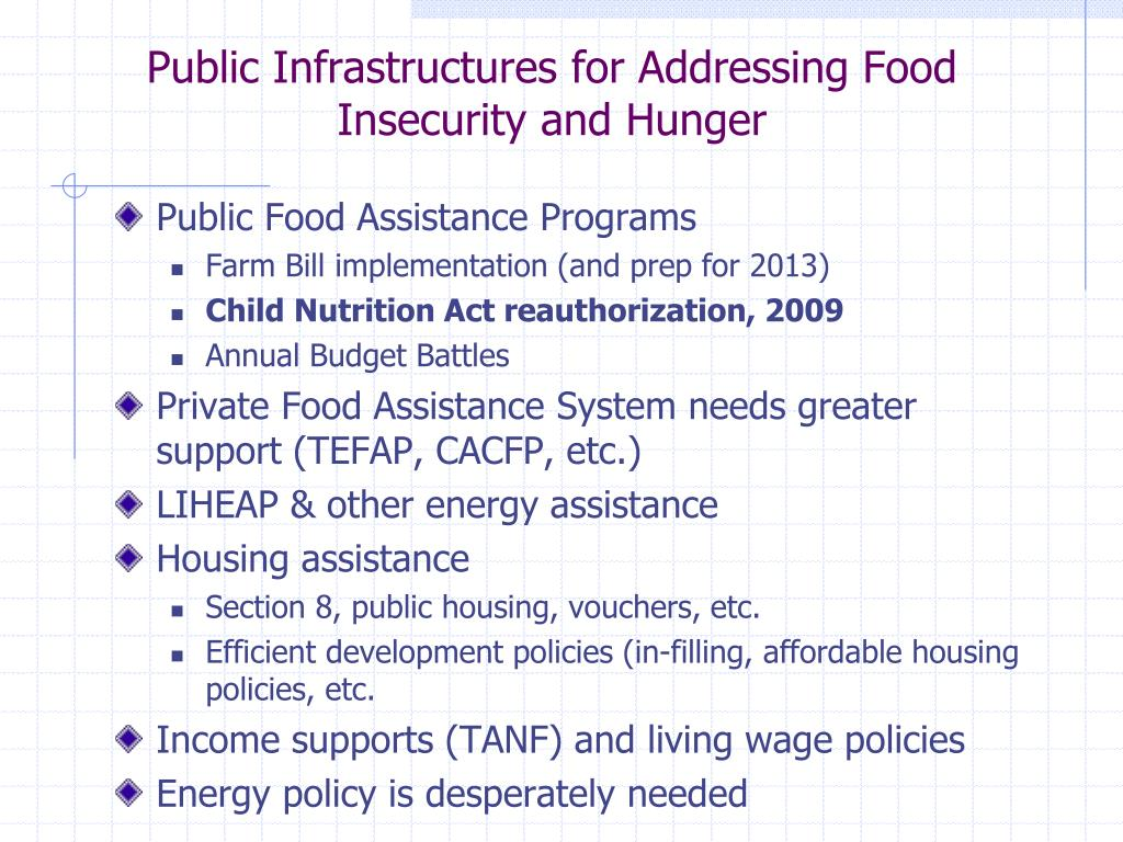 Public Infrastructures for Addressing Food Insecurity and Hunger