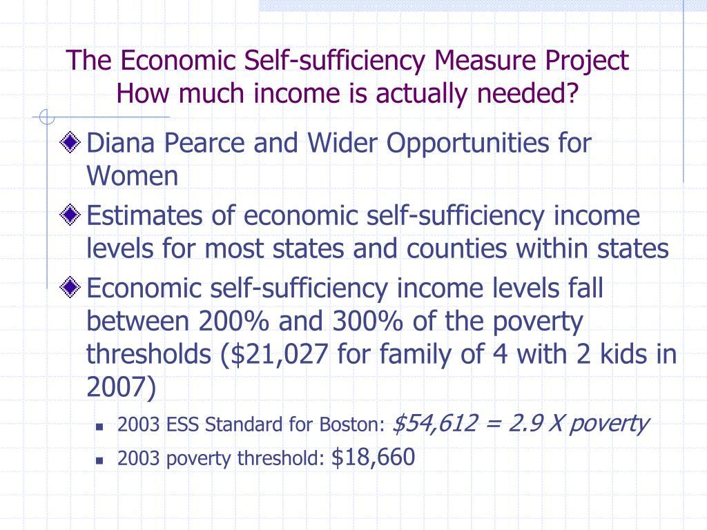 The Economic Self-sufficiency Measure Project