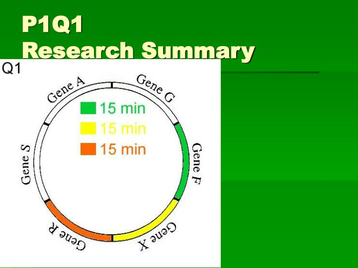 P1q1 research summary