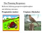 the planning responses